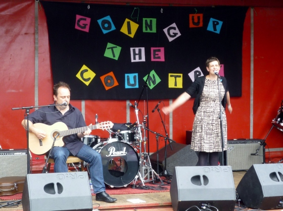 The Catenary Wires at Going Up the Country, 13th June 2015