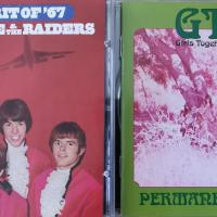 Robert Pollard's Guide To The 60s - Tape 16: Paul Revere & The Raiders - The Spirit Of '67 / GTOs - Permanent Damage